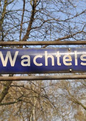 Straßenverkehrsschild Wachtelstraße